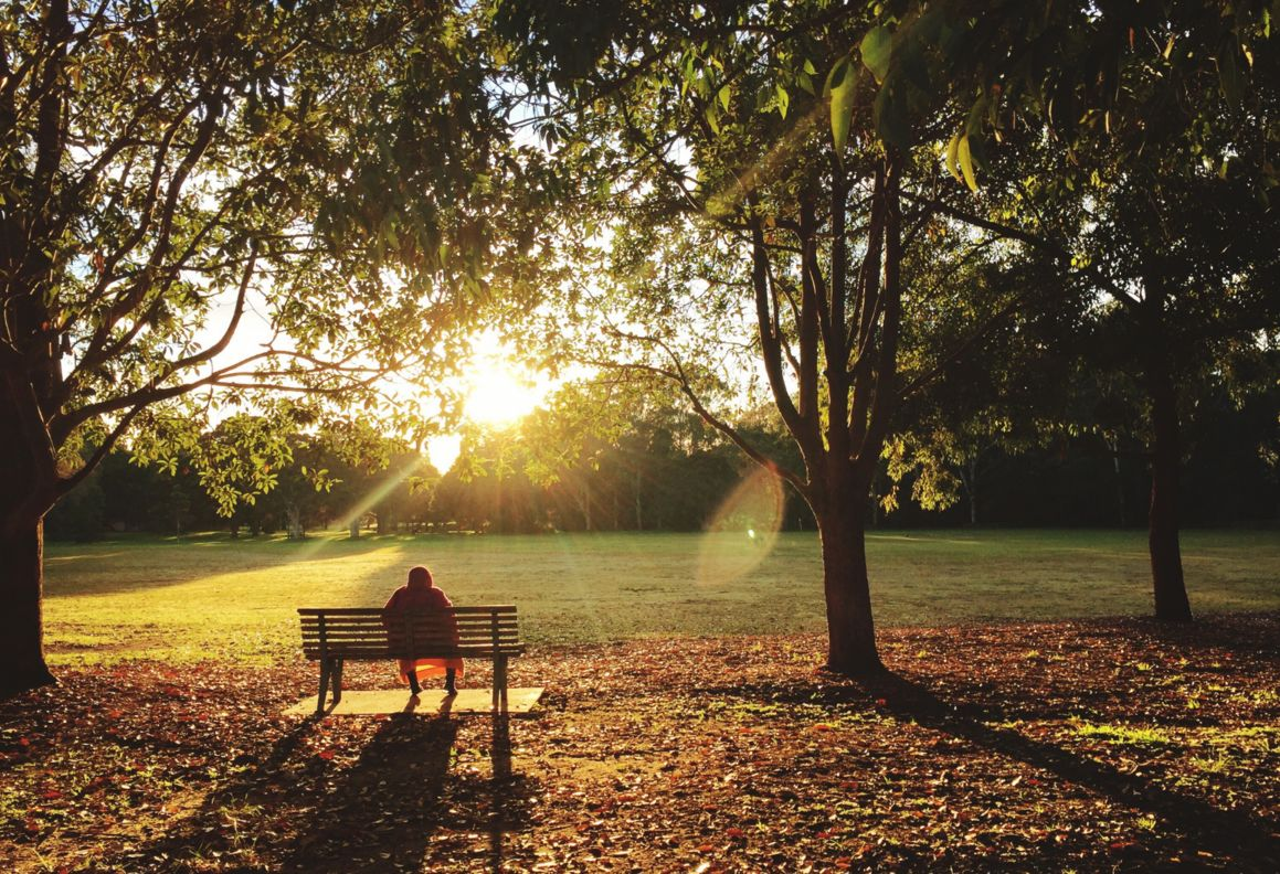 Person on park bench watching sunset in autumn