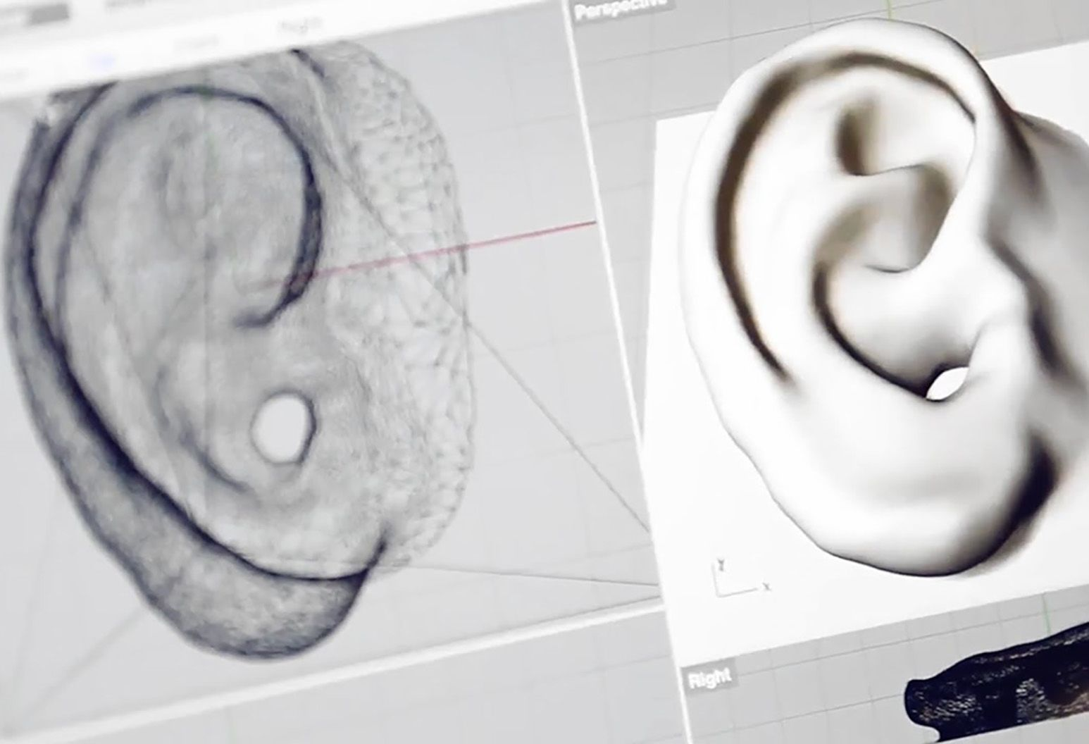 A drawing and a white model of a human ear are shown on white background