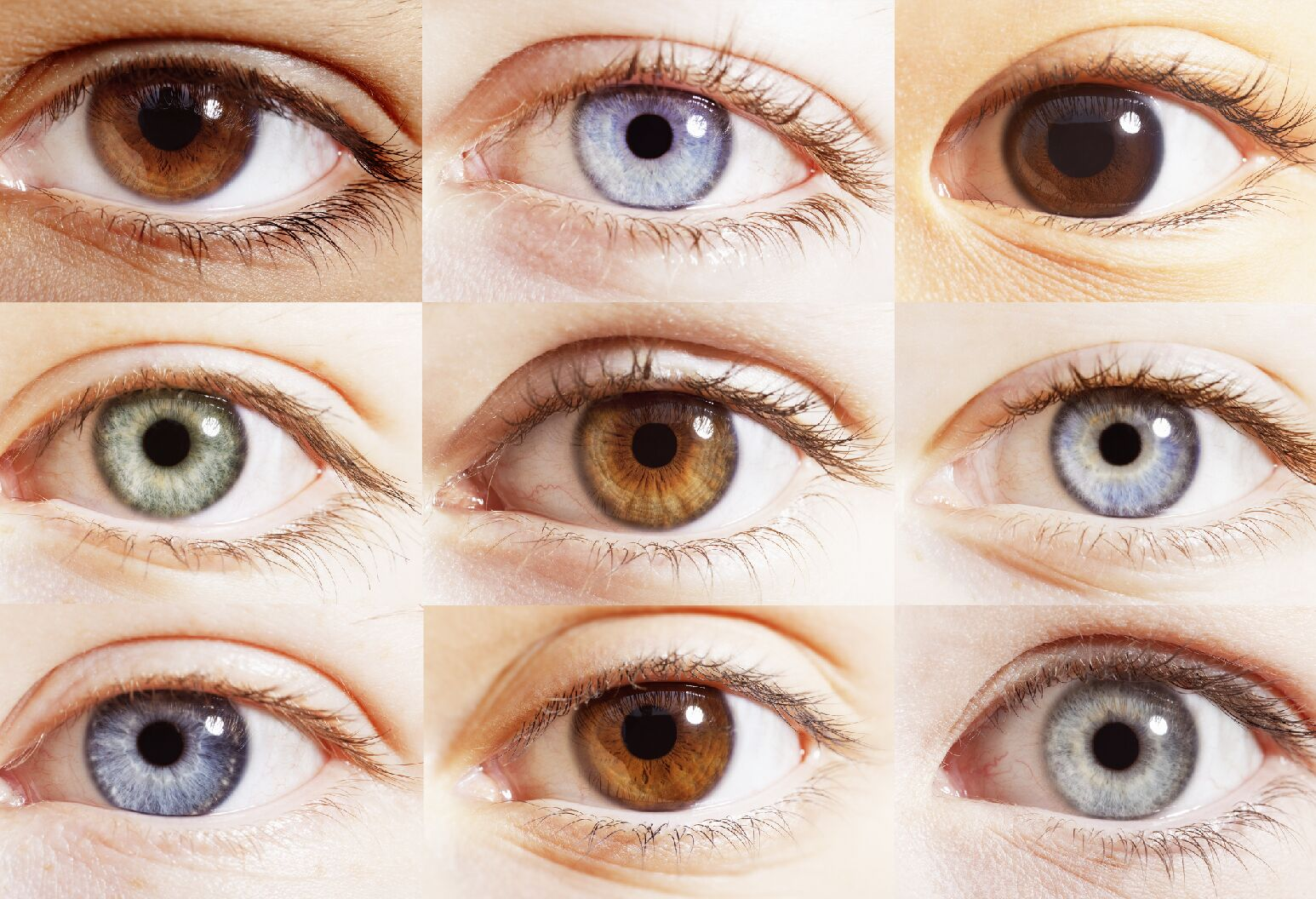 Eyes of multiple colors