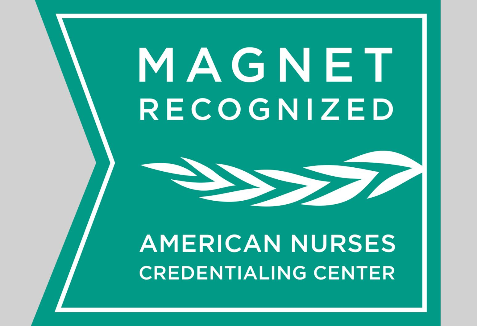 Magnet status logo teal with white writing. Reads: magnet recognized.  American nurses credentialing center.