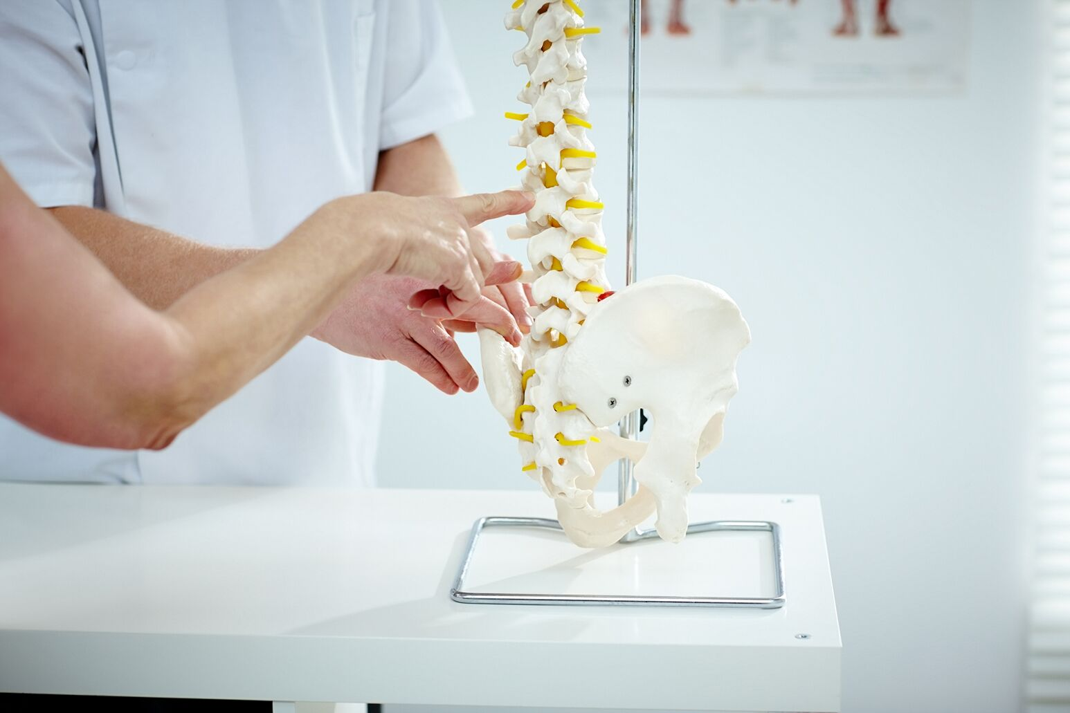 Clinicians review a spine