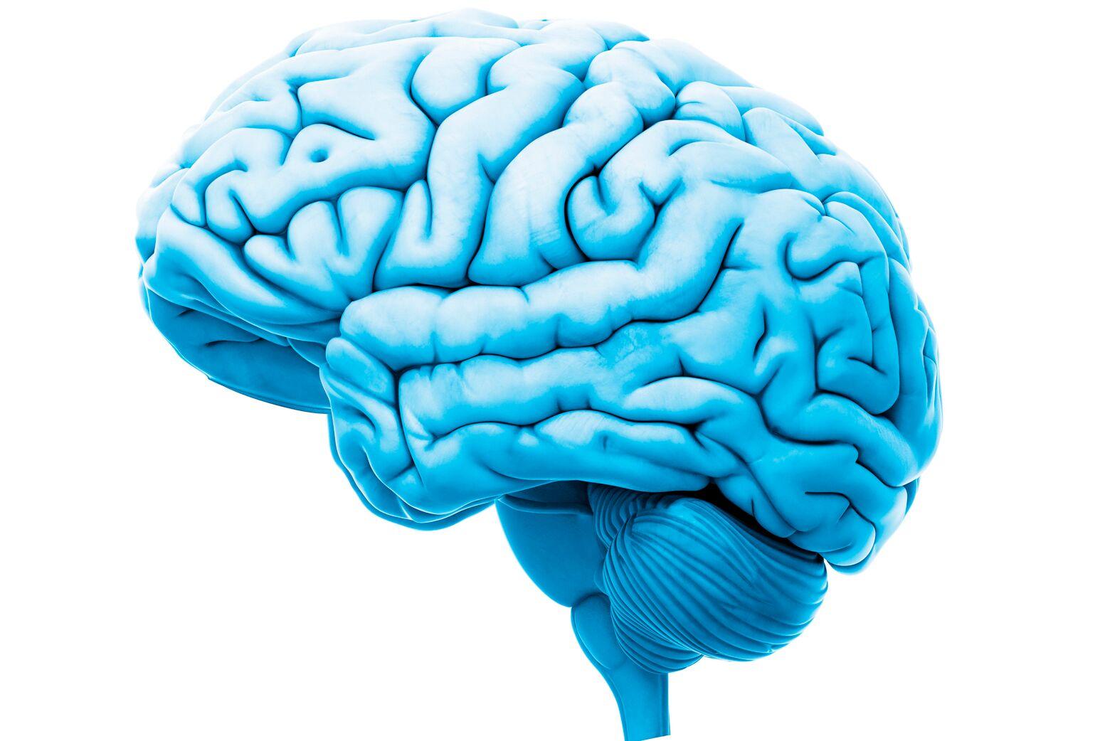 A blue brain