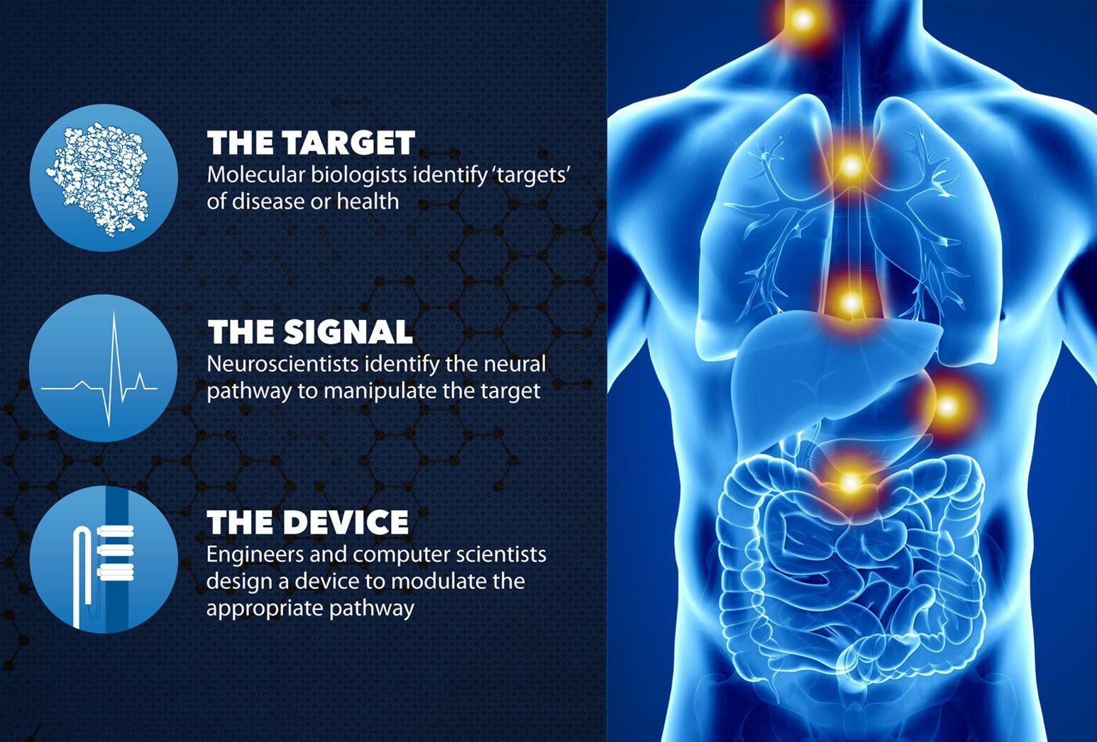 Bioelectronic Medicine image