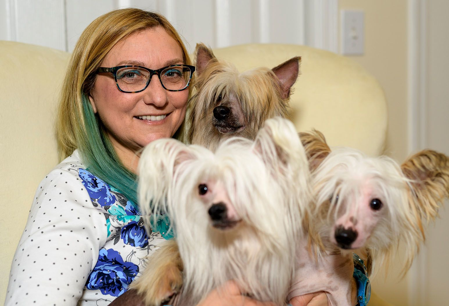 Woman sitting on a couch holding three small dogs.
