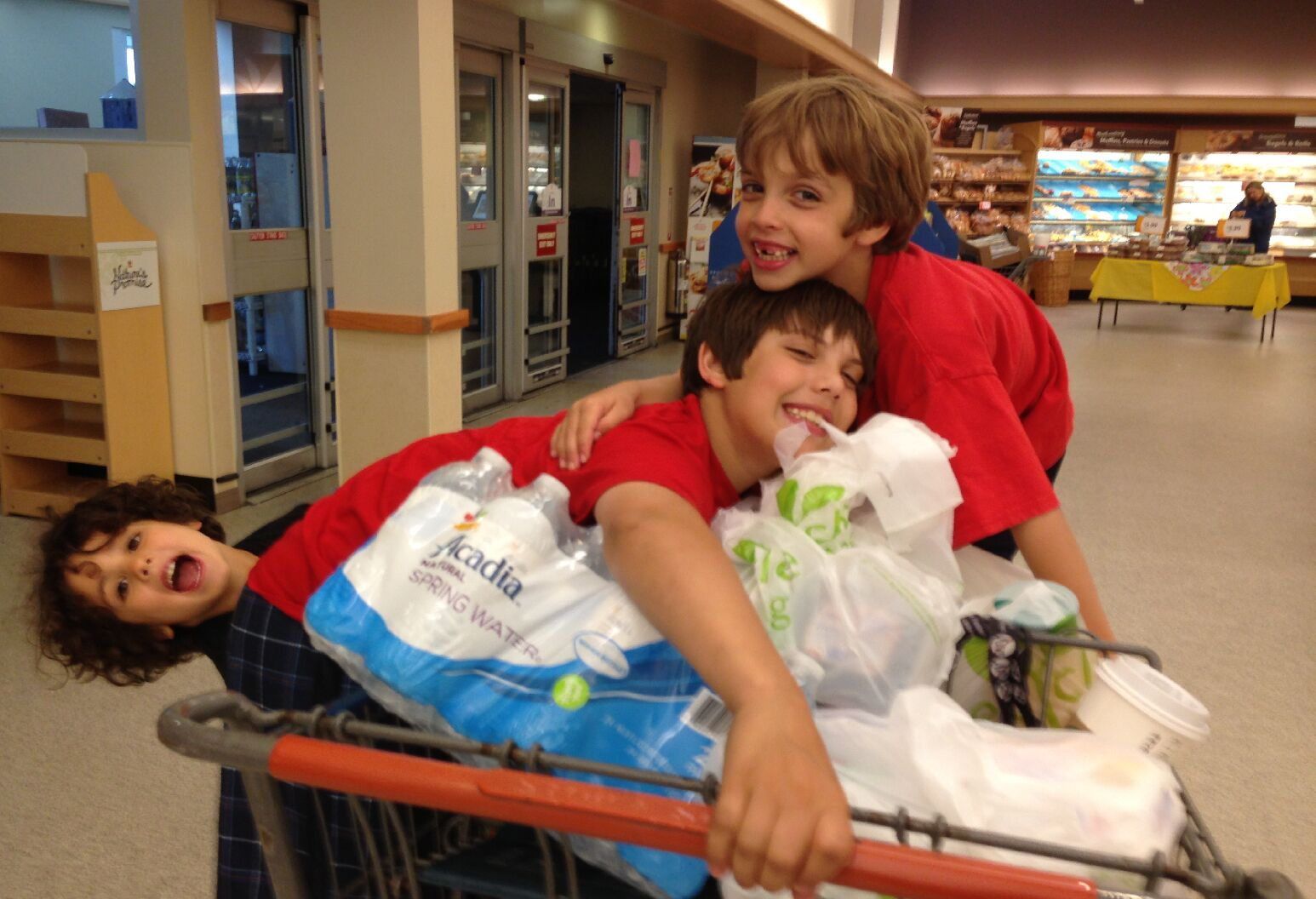 3 boys in a shopping cart