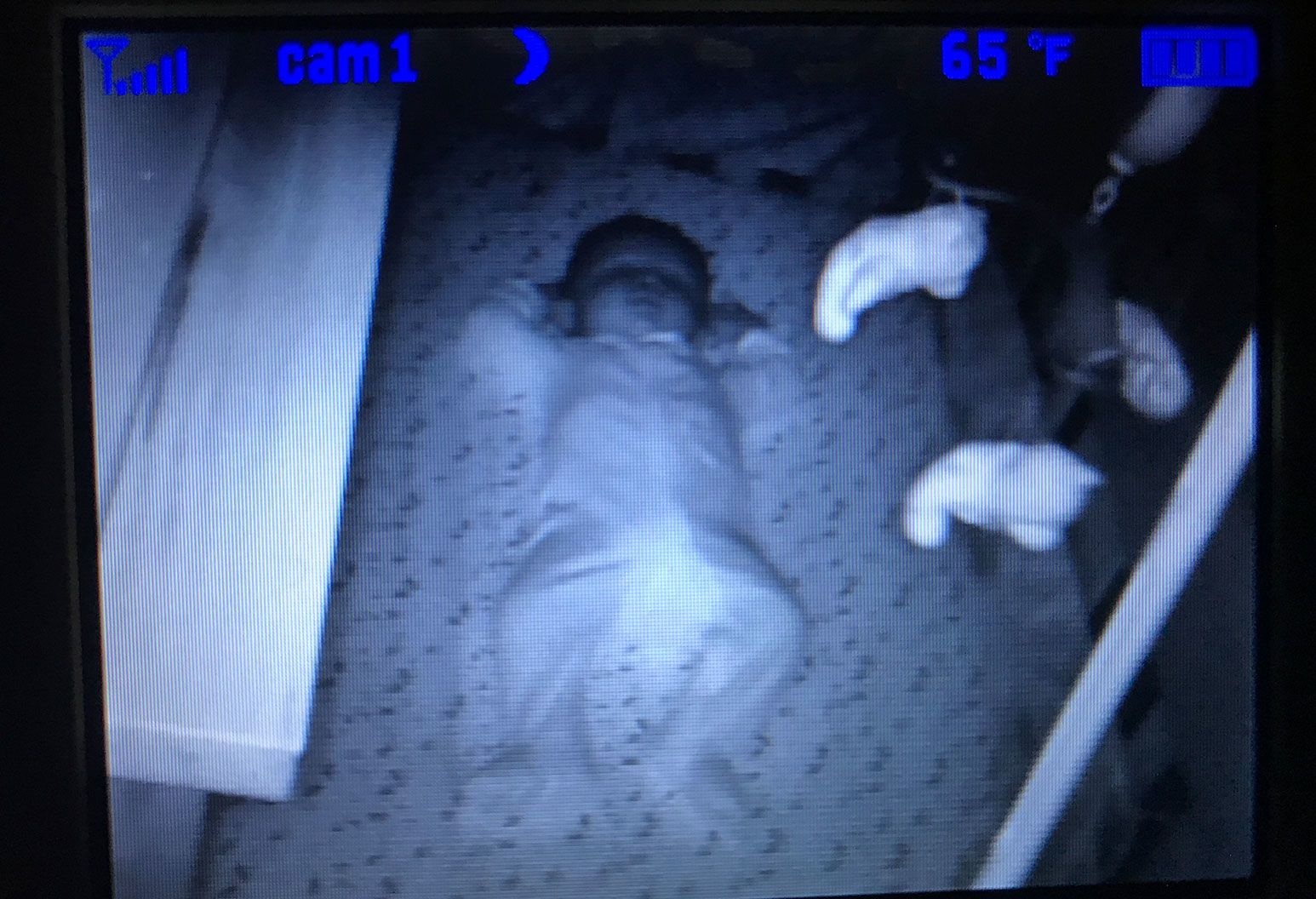 A baby monitor screen shows a baby laying down on it's back in a crib with his arms by his head.