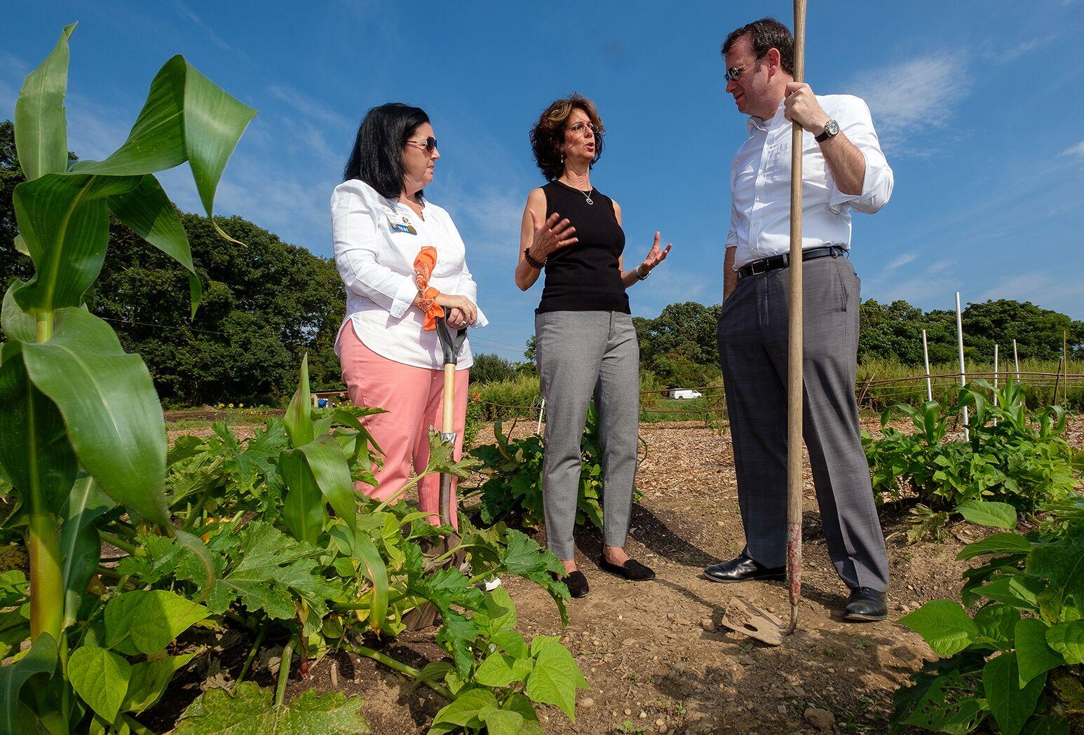 North Shore University Hospital leaders work Island Harvest Food Bank farm