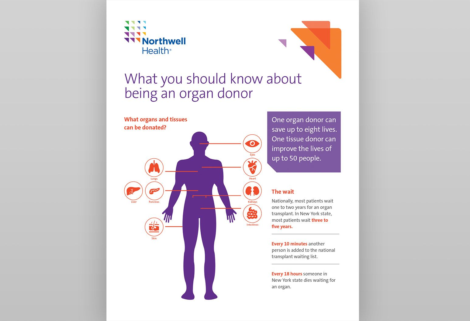 white background has purple image of human body with arrows pointing to organs that can be donated. Heading reads: what you should know about being an organ donor