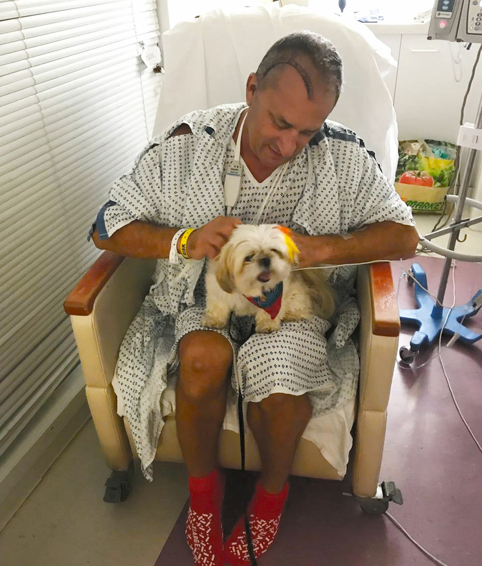 A man with stitches and medical staples across his scalp in a hospital gown sits in a chair within a hospital room while holding a shitzhu dog on his lap.