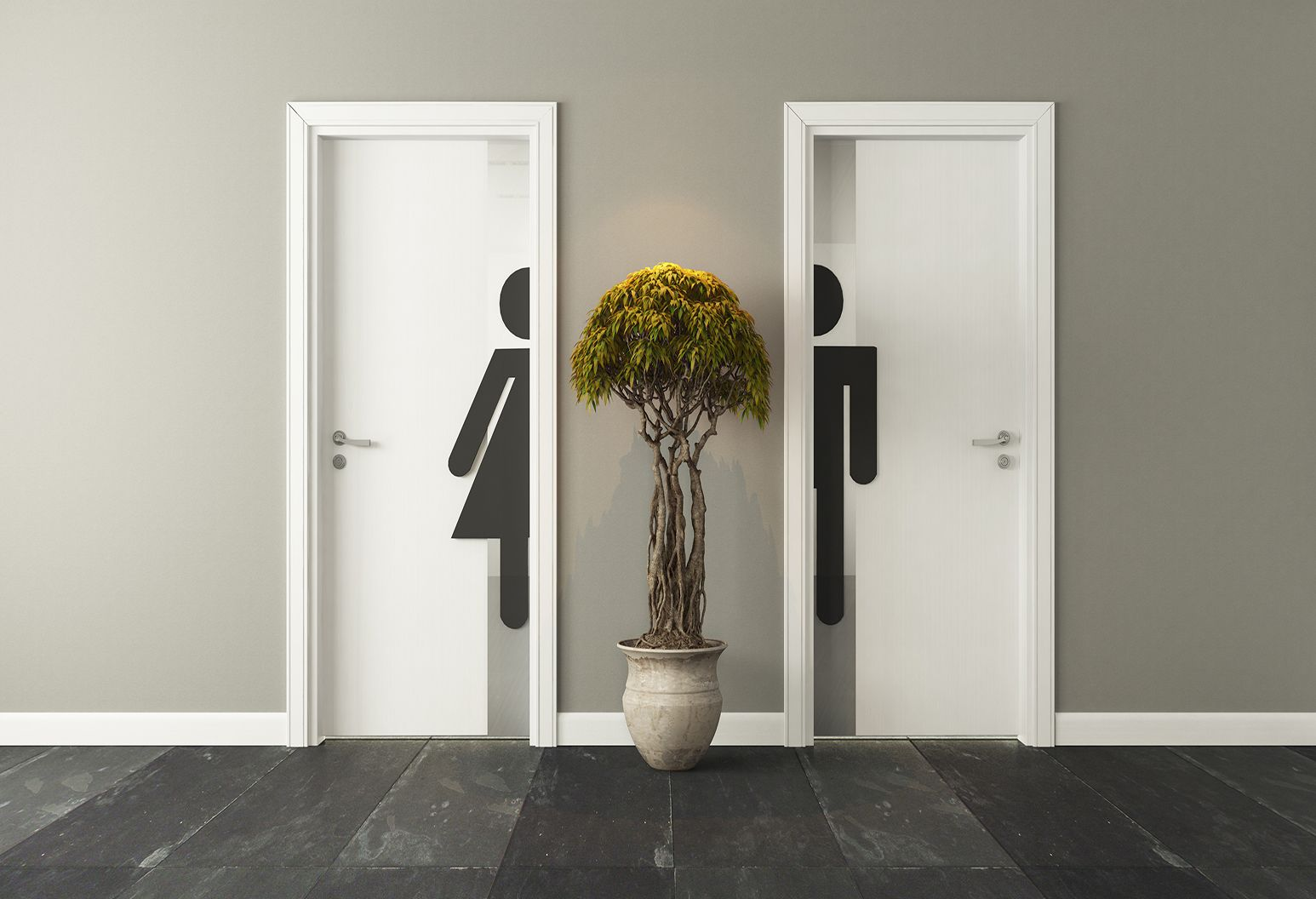 Two white bathroom doors are closed, one with half a female figure on it, the other with half a male. A tall plant sits between the doors. Floors are dark gray and walls are light gray.