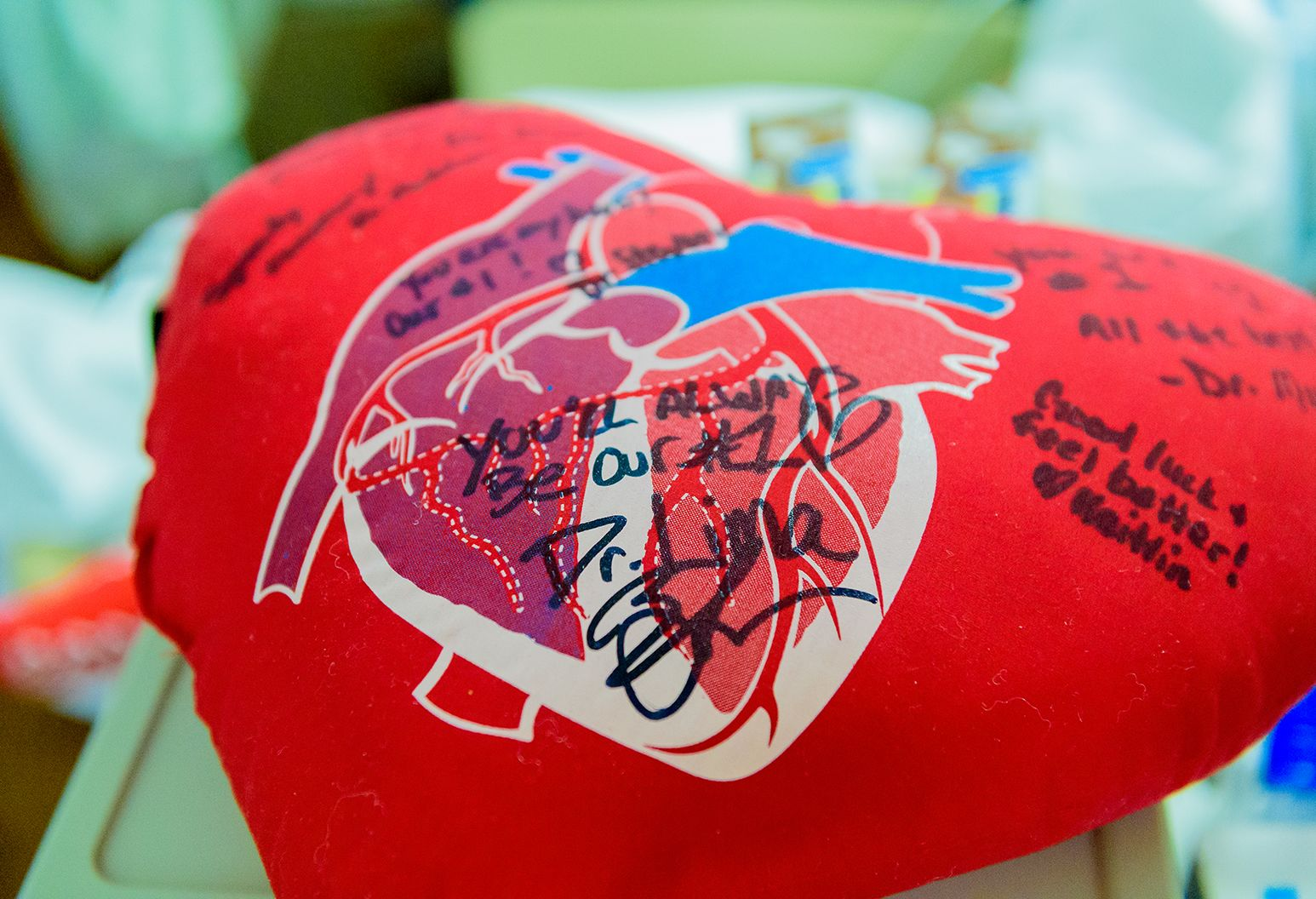 This is an image of a red, heart shaped pillow with an illustration of a human heart on the front. There is also writing on the pillow in black ink.