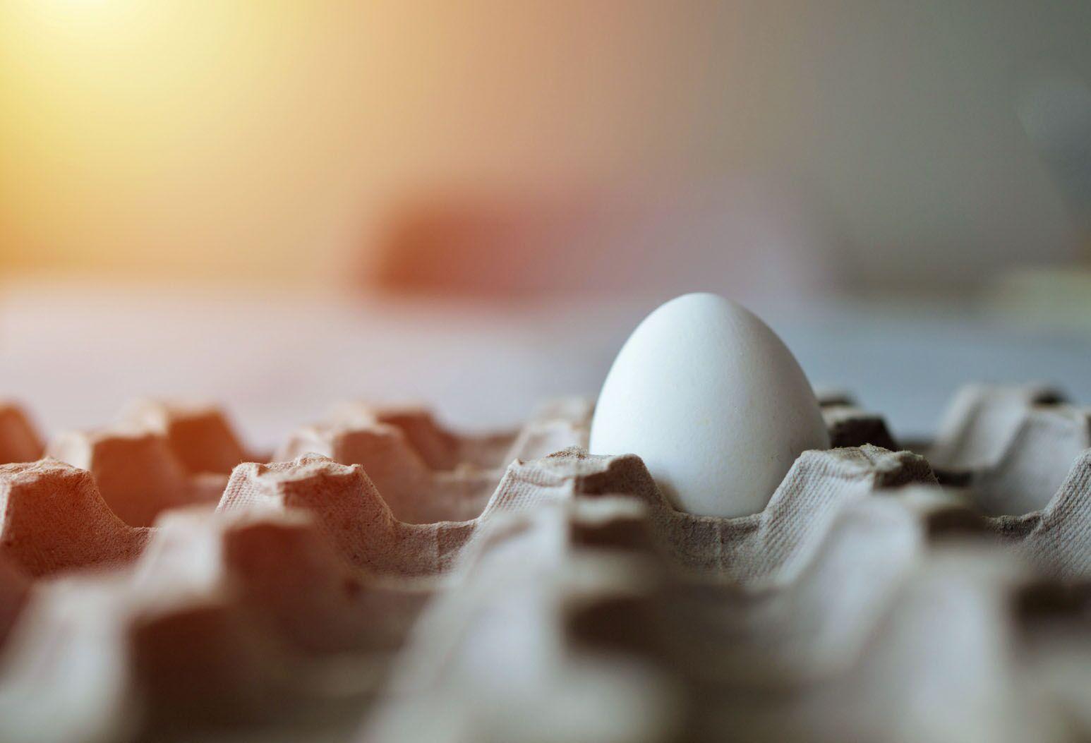 A sole egg in a carton