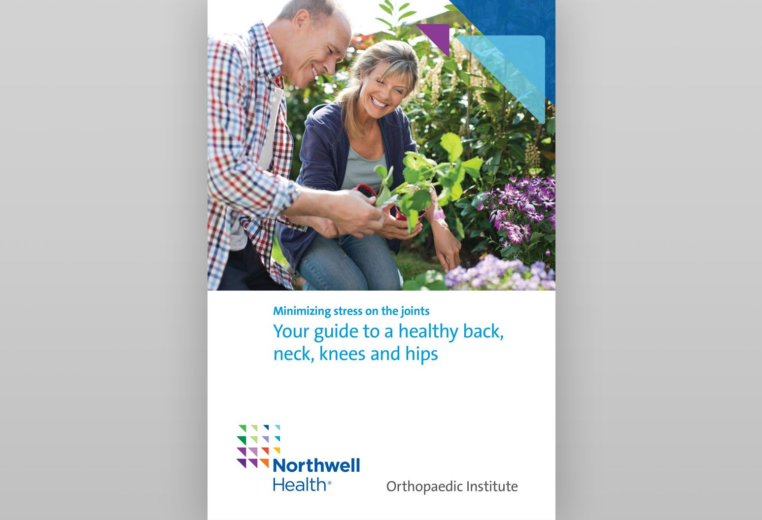 The cover of an ebook called Your guide to healthy back, neck, knees and hips is displayed with a photo of a middle aged couple gardening. There are four other ebooks displayed behind that.