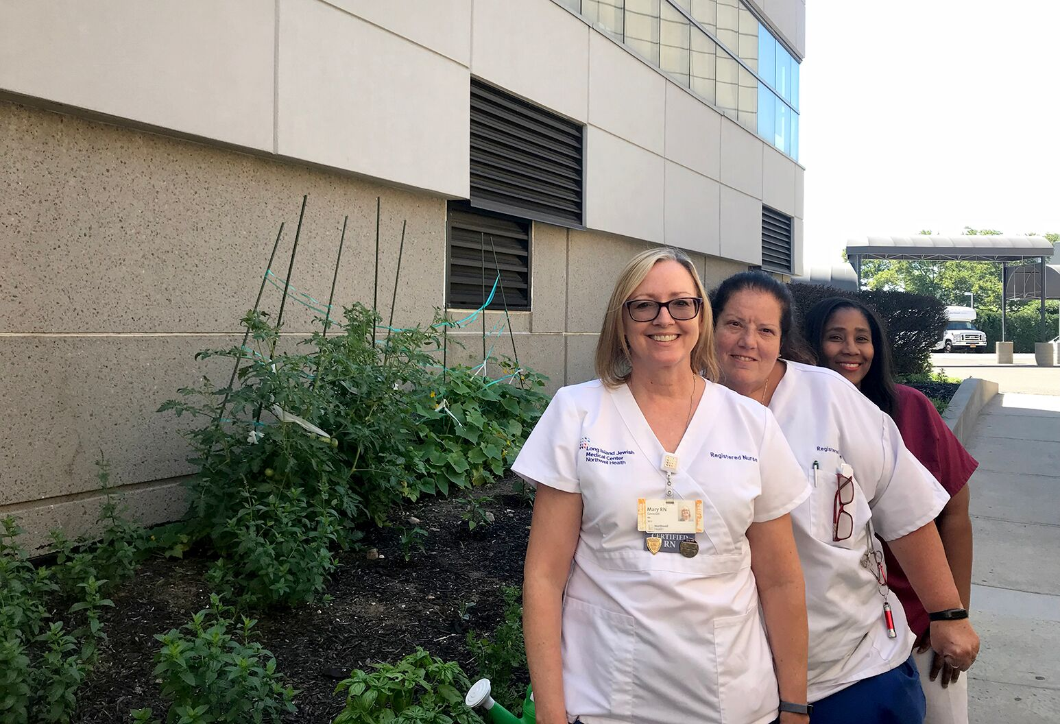 Nurses gardening at LIJ