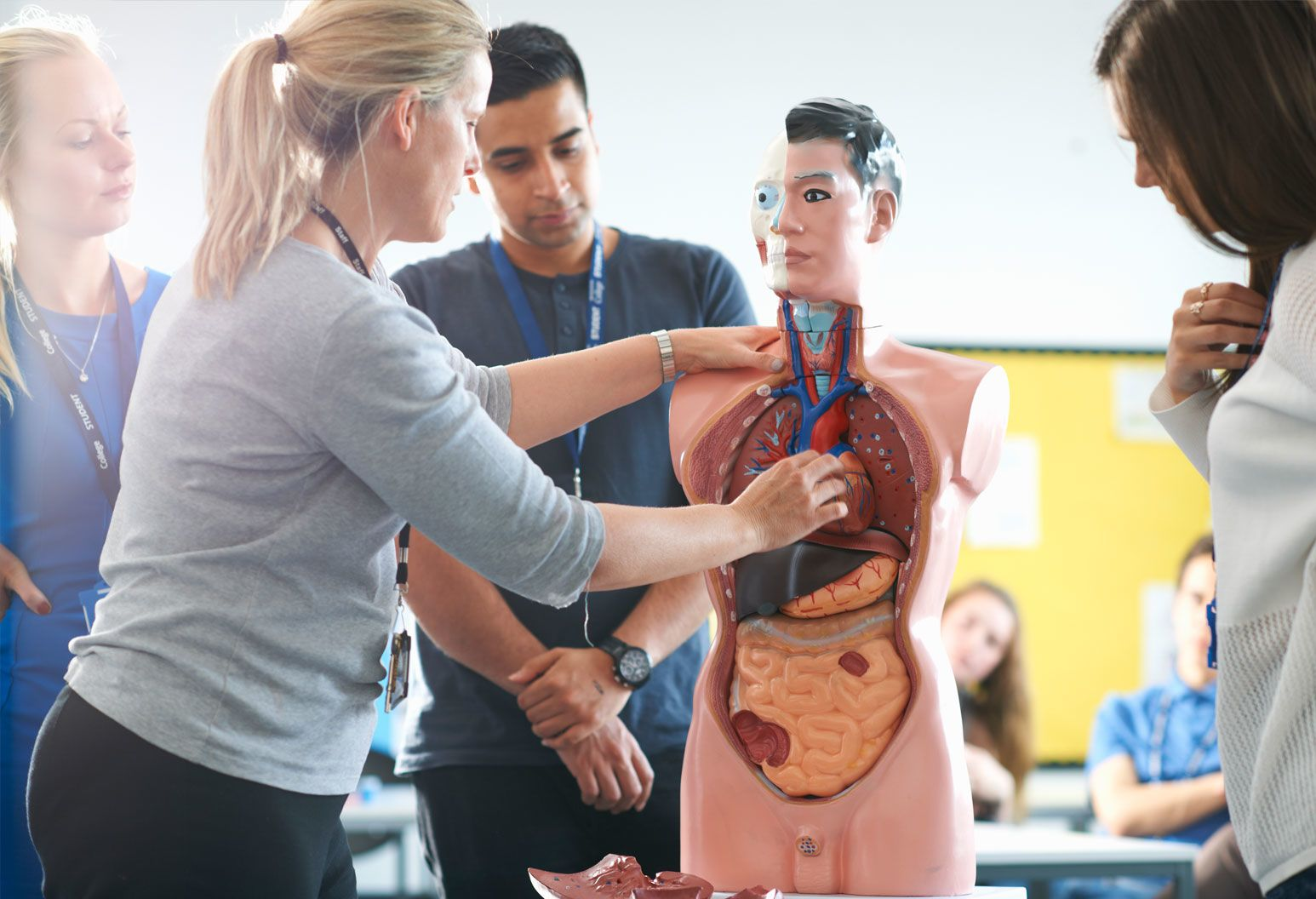 A woman teaches a class using a human dummy with organs exposed.