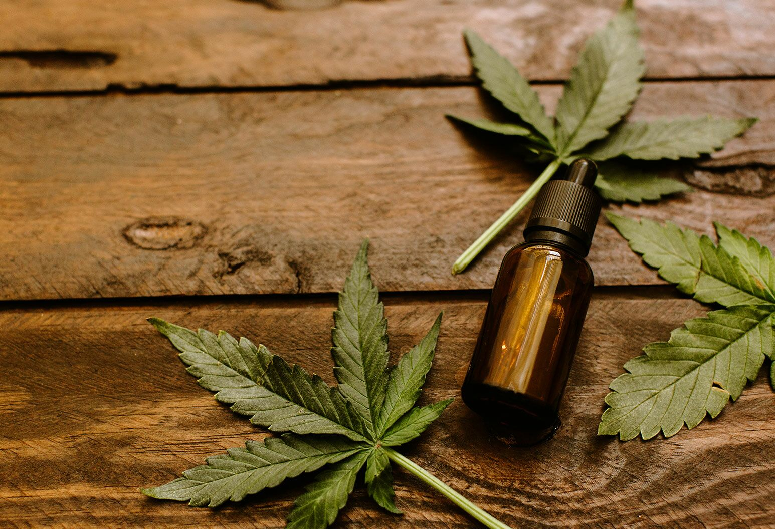 Should You Try CBD Oil?