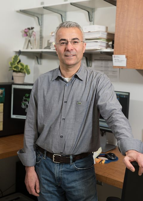 A portrait of Yousef Al-Abed, PhD, standing in an office. This image was used in Vol. 2 of Doctoring in an article discussing Dr. Al-Abed's new position as head of the Center for Molecular Innovation at the Feinstein Institute.