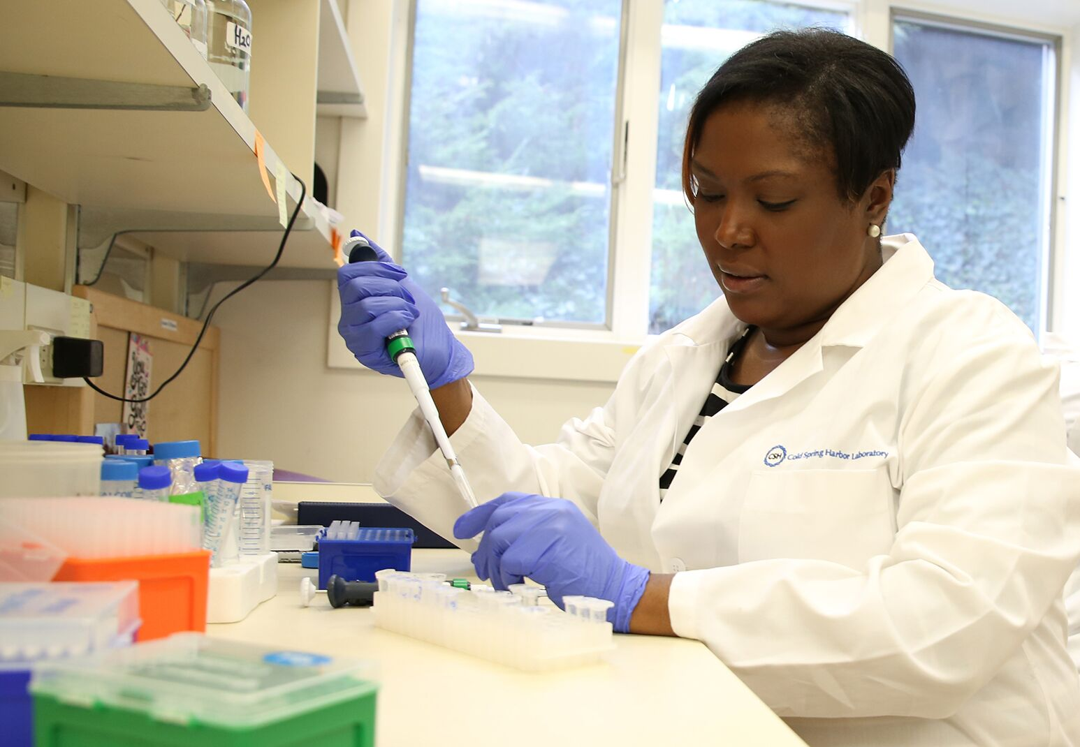 A researcher works with samples