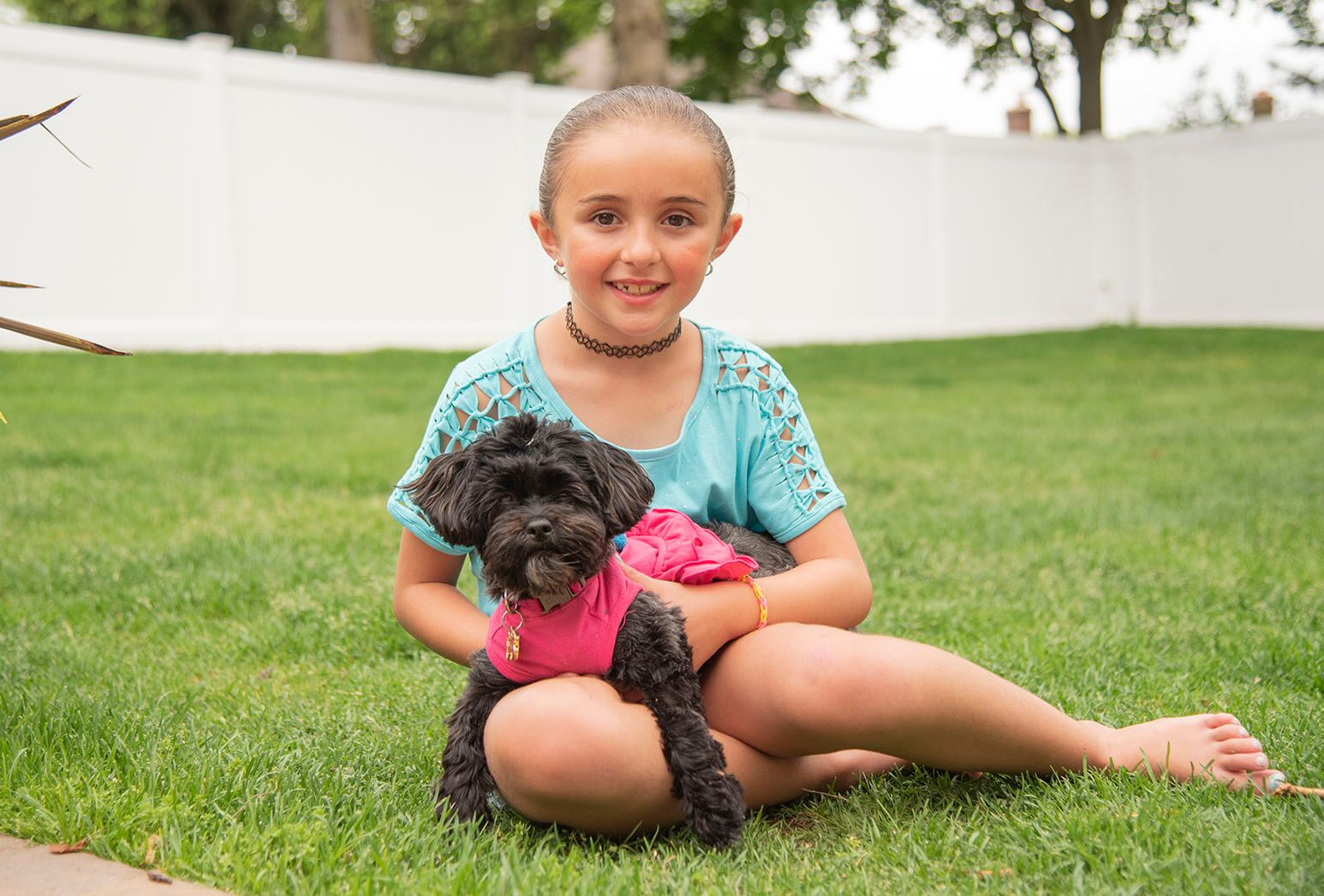Young girl in a blue top sitting on the grass with a small black dog in front of a white fence.