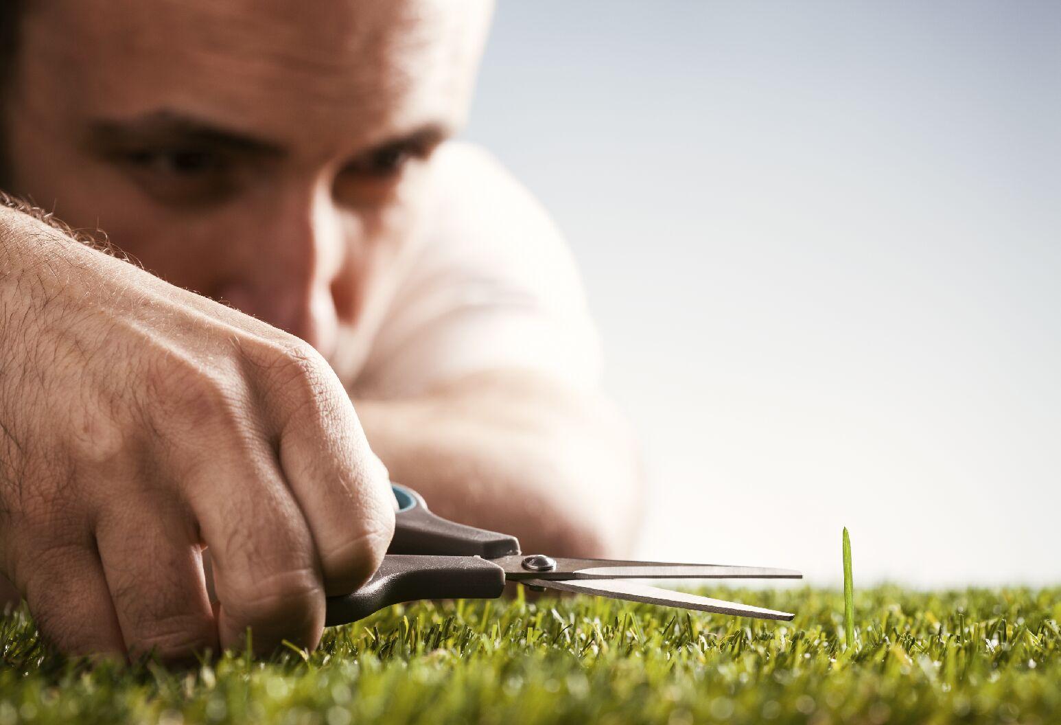 a man cutting a piece of grass with a scissors