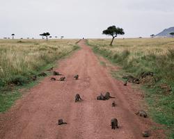 KENYA Documentary