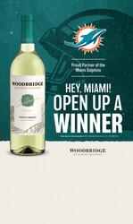 Woodbridge x Dolphins Case Card