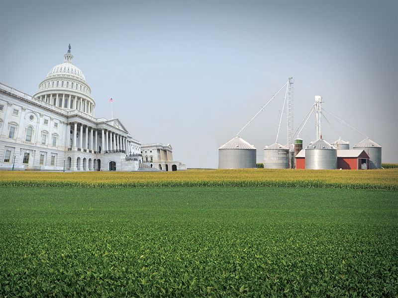 The constant news stream coming out of Washington DC can almost make you dizzy. Which policy issues will have the biggest impact for your farm?