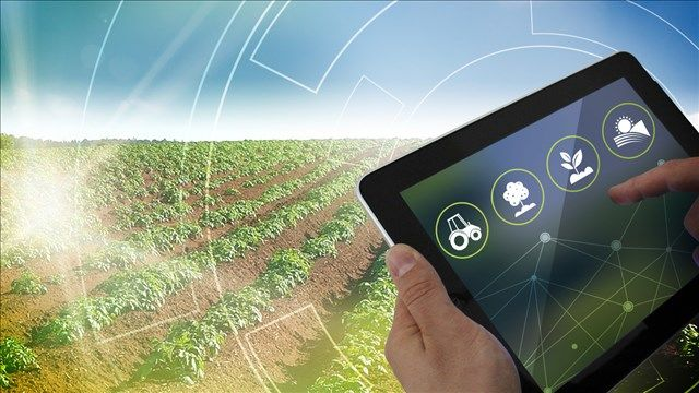 A technology startup based in Oakland, California is using artificial intelligence to tell a potato farmer if fields are getting too much or too little water.