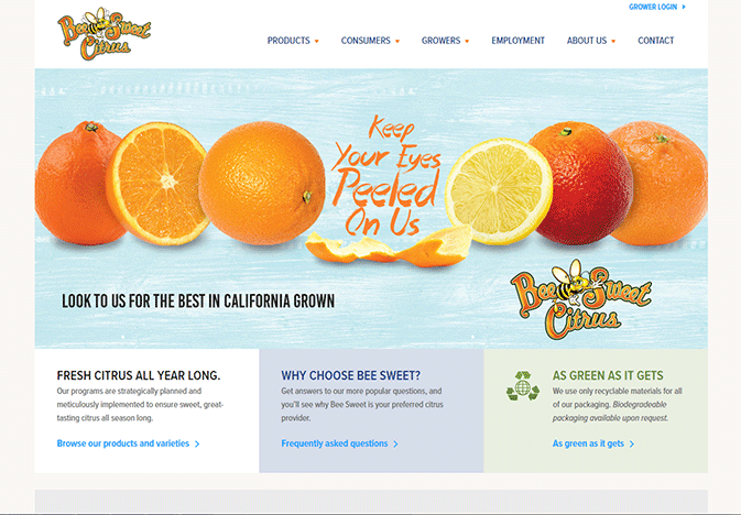 Bee-Sweet-new-website_WEB