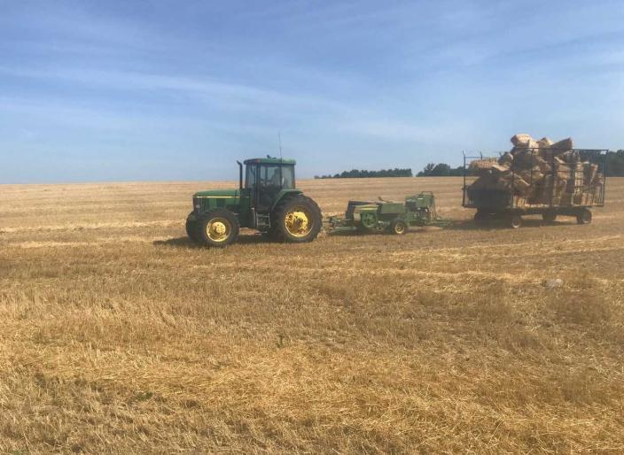 Farming On The Horizon