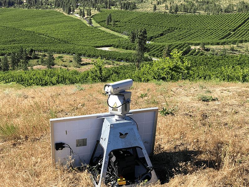 Starr-Ranch-bird-laser