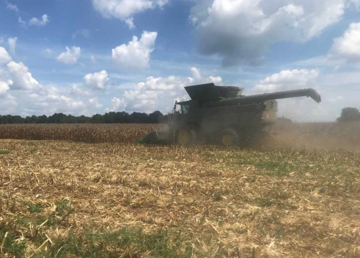 North Carolina Harvest