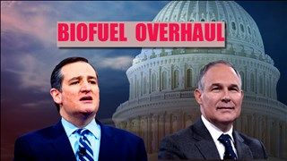 A day after a tentative agreement to overhaul U.S. biofuel policy appeared to collapse amid farm-state concerns, EPA chief Scott Pruitt met with the lead senator pushing for the changes: Ted Cruz.
