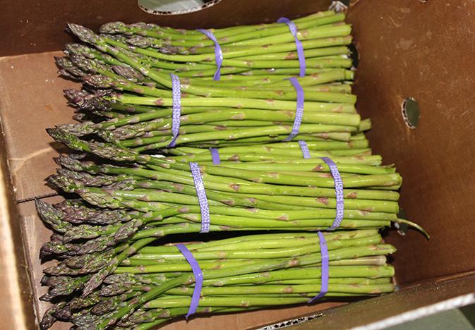 Michigan-asparagus_WEB