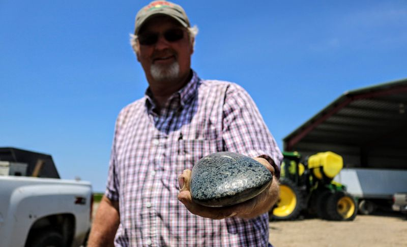 Farmland often serves as a giant time capsule. Arrowheads, fossils, petrified wood, meteorites, marbles, coins, buttons and bullets are a portion of an endless list pulled straight from the trappings of yesteryear.