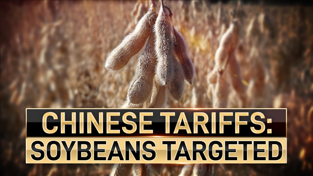 China's threats of tariffs against imports of U.S. soybeans may end up being a costly move for the Asian country if the trade spat heats up.