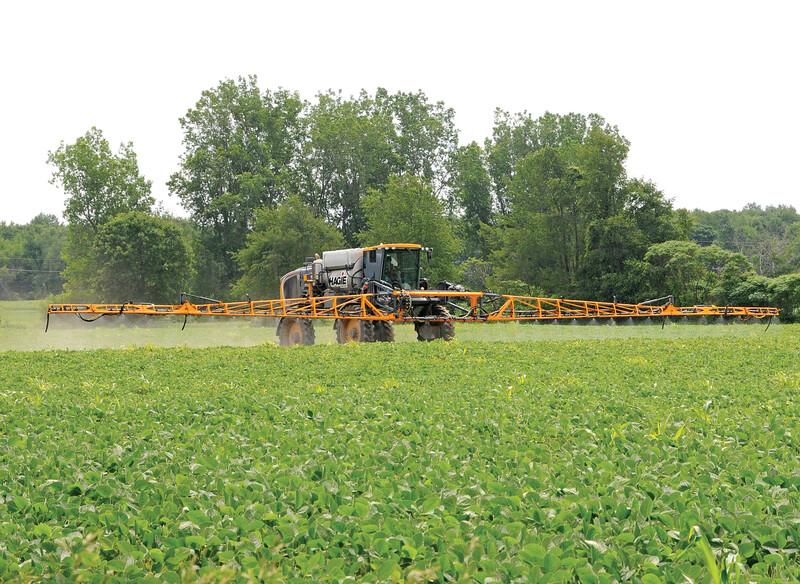 Spraying beans