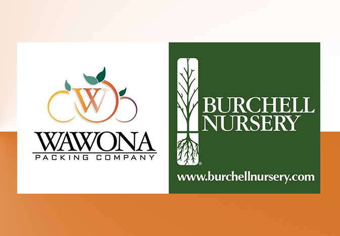 Wawona Packing Co. LLC, Cutler, Calif., has acquired the stone fruit breeding assets of Burchell Nursery Inc., including more than 60 patented fruit trees and associated genetics.