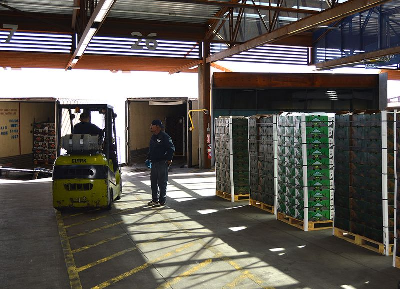 Fresh produce imports inspected in Nogales, Ariz.