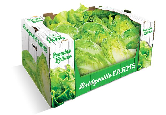 Georgia-Pacific-lettuce-box