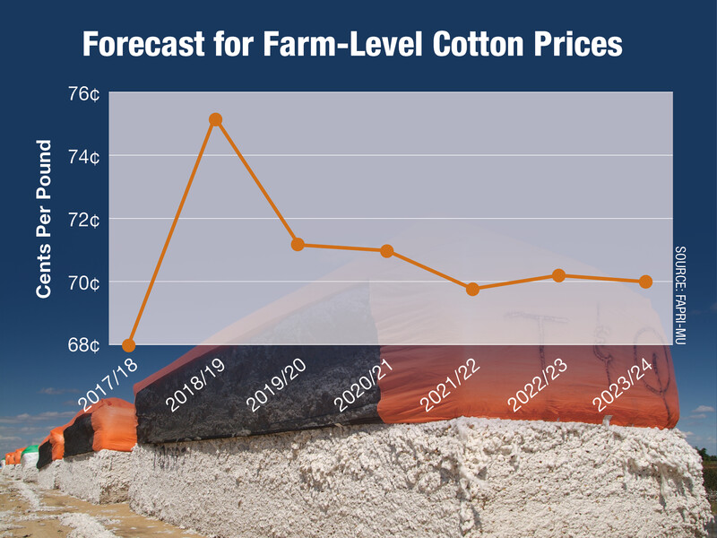 Forecast for Farm-Level Cotton Prices