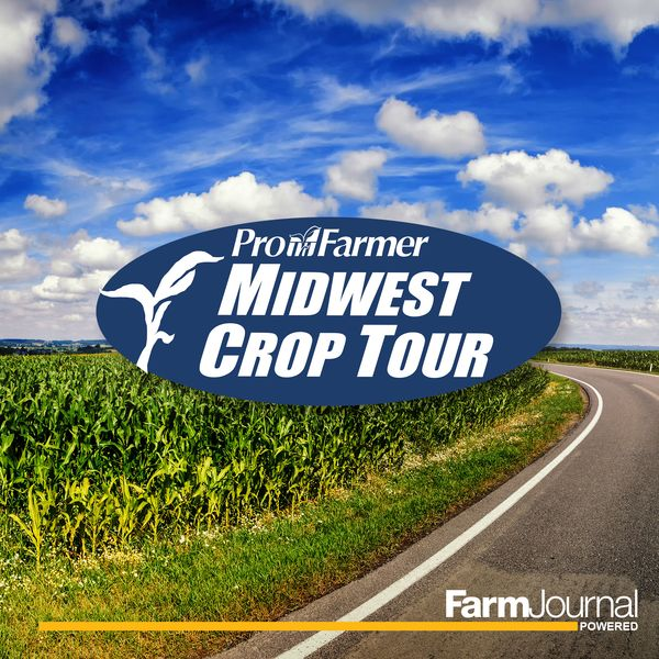 Iowa and Minnnesota were full of surprises as the Pro Farmer Midwest Crop Tour wrapped up in Rochester, Minnesota.  Listen to the podcast to get all of the final tour results.