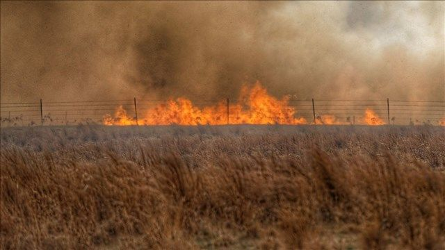 Ongoing drought and wildfires have cattle ranchers in at least five Southwestern U.S. states scrambling for hay or pastureland, while others are selling off some of their herds.
