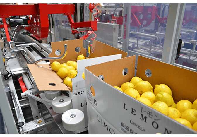 High temperatures in California have contributed to a demand-exceeds-supply situation for lemons.
