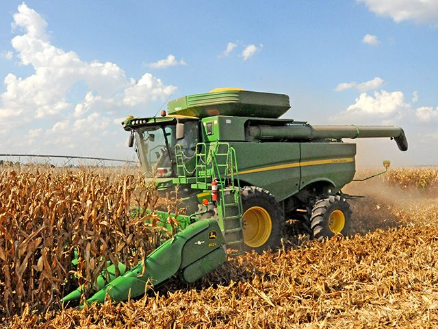 Corn head adjustments help prevent cracked or chipped kernels in the grain tank, grain lying on the ground after a pass and whole stalks and trash moving into the machine.