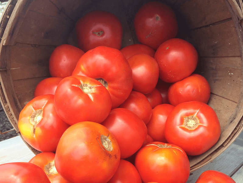 New-Jersey-tomatoes