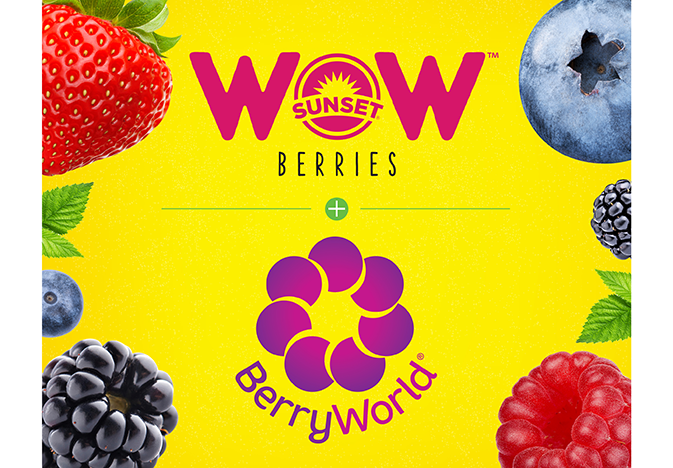 wow-berries-web