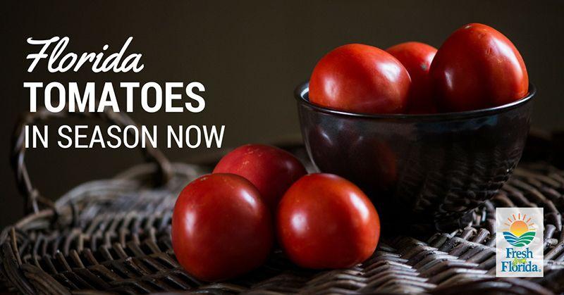 floridadeptofag_tomatoes