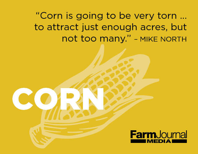 Corn_Outlook 2019