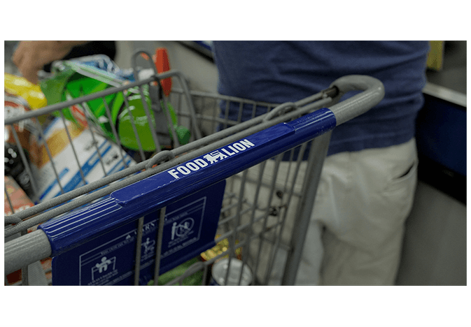 food lion cart - web